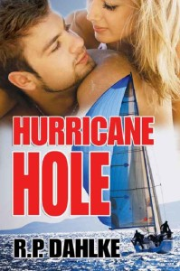 Hurricane_FINAL_eBook 666x1000 pixels