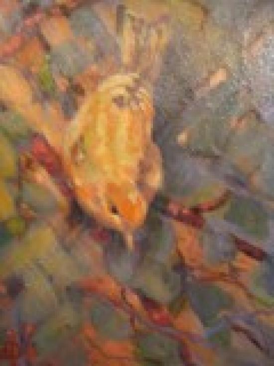 bird-small