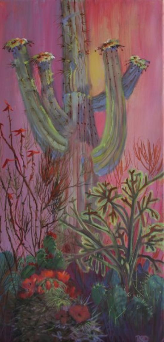 saguaro_in_bloom_lg